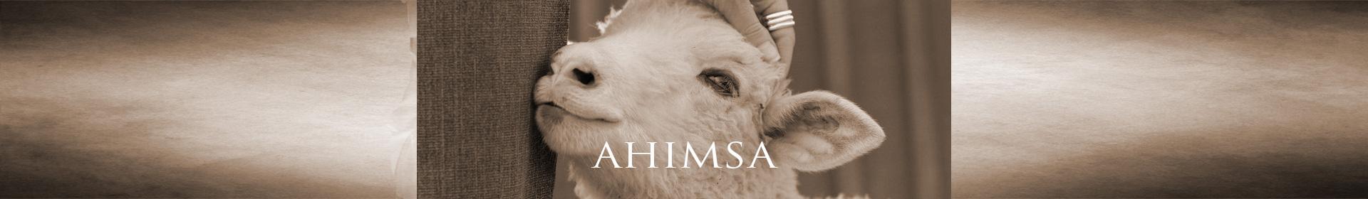 Ahimsa - Nonviolence