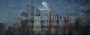 Comfort in the City: the Jivamukti Yoga Focus of the Month