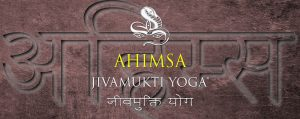 Ahimsa: the Jivamukti Yoga Focus of the Month