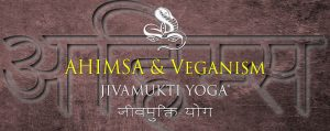 Ahimsa and Veganism