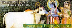 Progressing Toward Kindness: the Jivamukti Yoga Focus of the Month