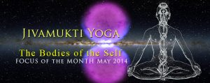 The Bodies of the Self: the Jivamukti Yoga Focus of the Month