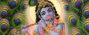 Serene Intelligence the Jivamukti Yoga Focus of the Month
