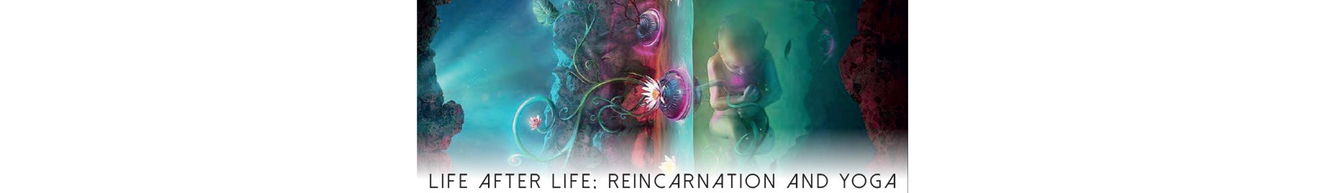 Life after Life Reincarnation and Yoga Jivamukti FOTM