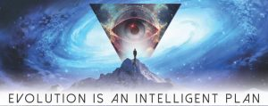 Evolution is an Intelligent Plan - the Jivamukti Yoga Focus of the Month