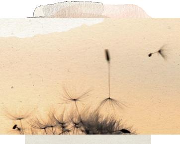 LIFE: A CONTINUOUS MOVEMENT – RHYTHM, FLOW, & CHANGE